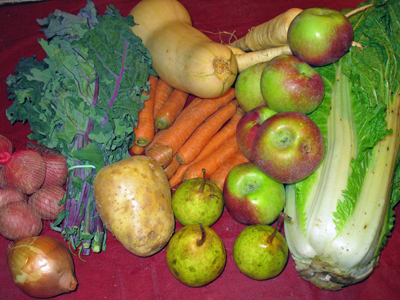 Winter CSA Week 1