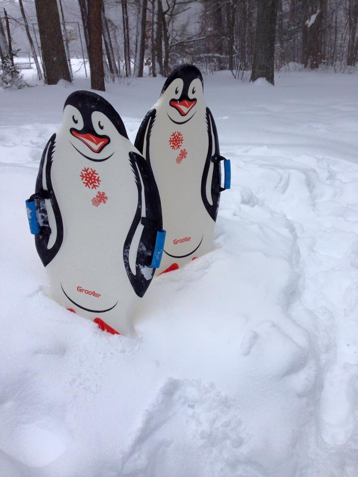 Penguin sleds in too much snow